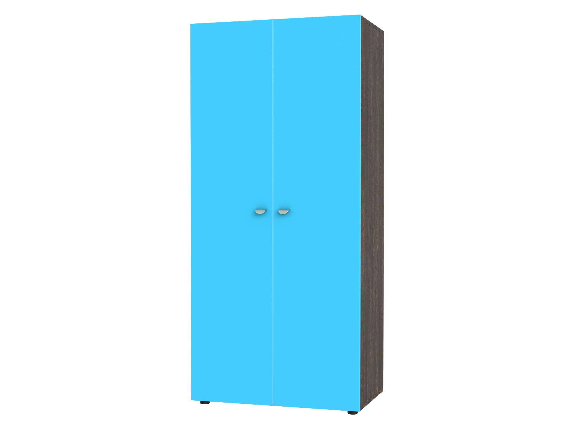 Шкаф 2-х дверный Golden Kids Голубой, Коричневый темный